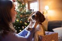 Teenage Girl Petting Cute Dog ...