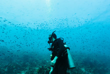 Man Scuba Diving Underwater Am...
