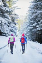 Women Hiking In Snowy Woods