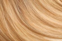 Healthy Long Female Hair, Clos...