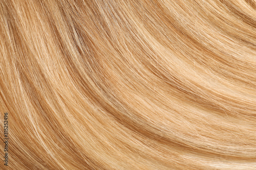 Healthy long female hair, closeup Fototapet