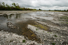 Toxic Polluted River, Algae Bl...