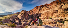 African American Woman At Red Rock Canyon Taking Selfie On Ledge