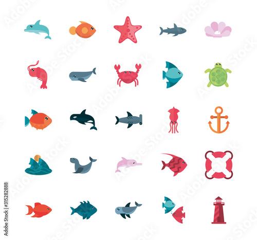 marine life, cartoon sea fauna animal set Wall mural