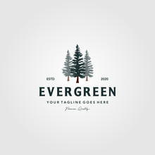 Pine Tree Vintage Logo Evergre...
