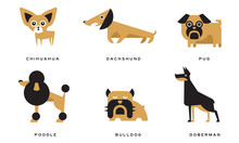 Breeds Of Dogs Collection, Chi...