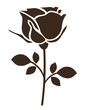 Decorative rose with leaves. Flower icon. Vector illustration
