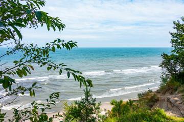 Morze Bałtyckie rośliny plaża