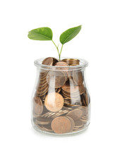 Glass Jar With Coins And Plant...