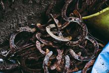 Arrière Plan Vieux Fers à Cheval Empilés