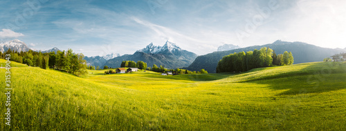Fototapeta Idyllic mountain landscape in the Alps with blooming meadows in springtime