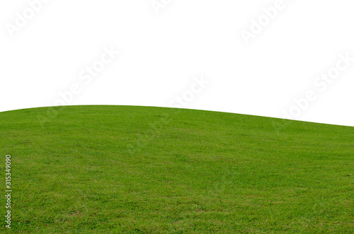 Obraz Green grass field isolated on white background with clipping path. - fototapety do salonu