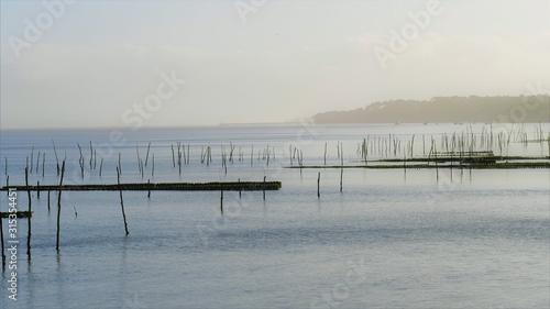 Bassin d'Arcachon Canvas Print