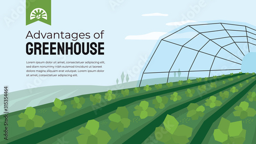 Fototapeta Vector illustration of advantage of greenhouse. Polyhouse cultivation in agriculture. Design template for horticulture or agronomy. Template with greenhouse farming for banner, poster, flyer, layout. obraz