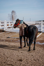 Warm Dressed Woman With Brown Horse By Hay
