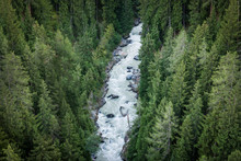 From Above Fast Foamy River Mountain Stream Rushing Through Dozens Of Evergreen Forests In Switzerland