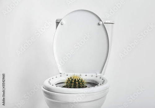 Cuadros en Lienzo Toilet bowl with pins and cactus on white background