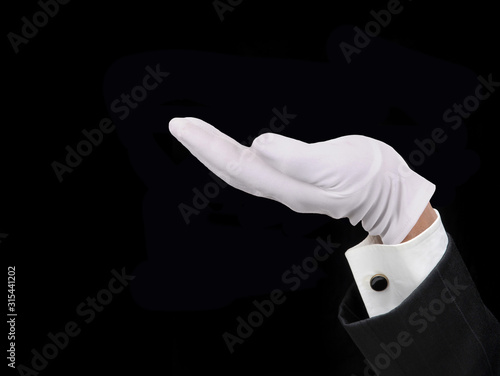 Obraz na plátne Concierge White Gloved Hand Over Black, Palm Up