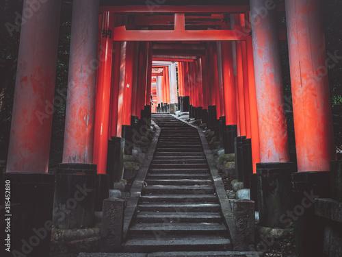 Fotografie, Obraz Japan