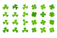 Clover Leaf Plant Icon Set. Sy...