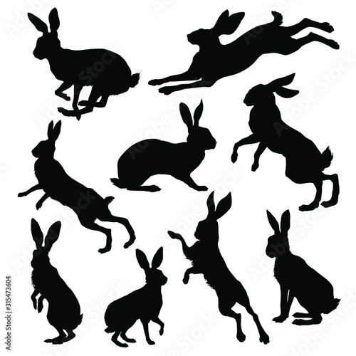 Photo Hare silhouette set. Vector illustration