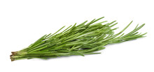 Fresh Green Rosemary Isolated ...