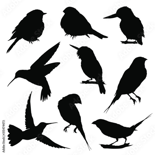 Fotografía Bird silhouettes. Vector illustration