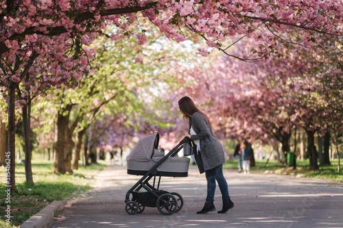 Happy mom walk with her little baby girl in stroller Wallpaper Mural