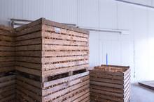 Onion Storage. Crops Warehouse...