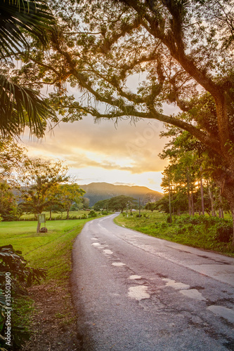 Lonely road and sunset at the beautiful Viñales valley in Cuba Canvas Print