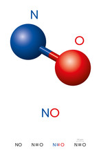 Nitric Oxide, NO, Molecule Mod...