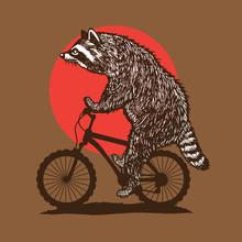 Racoon Riding Bike
