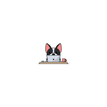 Cute Boston Terrier Dog Working On A Laptop, Vector Illustration