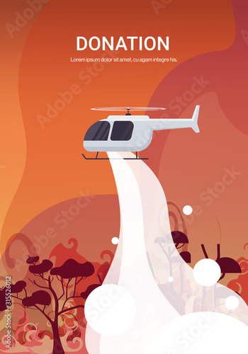Fototapeta helicopter extinguishes dangerous wildfire in australia fighting bushfire dry woods burning trees firefighting natural disaster donation concept intense orange flames vertical vector illustration obraz
