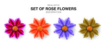 Realistic Set Of Rose Flowers ...