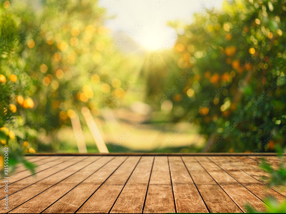 Fototapeta Empty wood table with free space over orange trees, orange field background. For product display montage