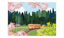 Local Train In Spring