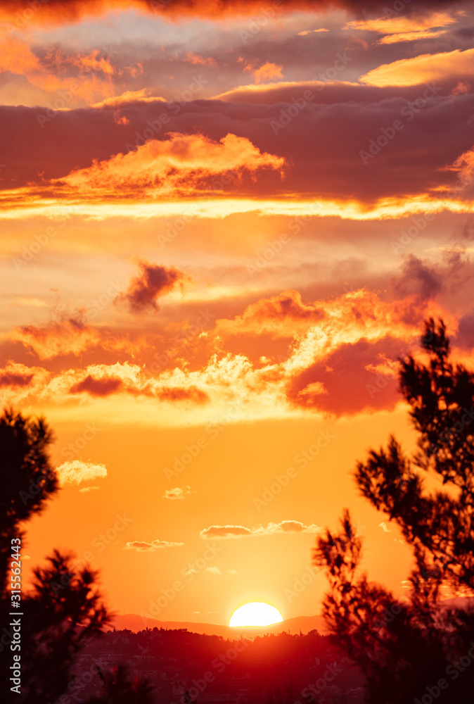 Fototapeta Sunrise, sunset through tree silhouette. Sunbeams paints with yellow and orange color the sky