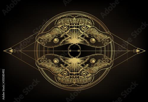 Golden moth over sacred geometry sign, isolated vector illustration Fototapet
