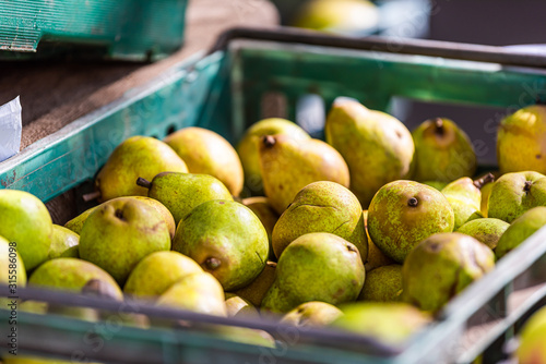 Closeup of many green raw colorful pears in crate stall on display at farmers ma Canvas Print
