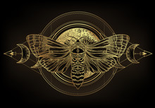 Golden Moth Over Sacred Geometry Sign, Isolated Vector Illustration. Tattoo Flash. Mystical Symbols And Insects In Gold. Alchemy, Occultism, Spirituality. Hand-drawn Vintage.