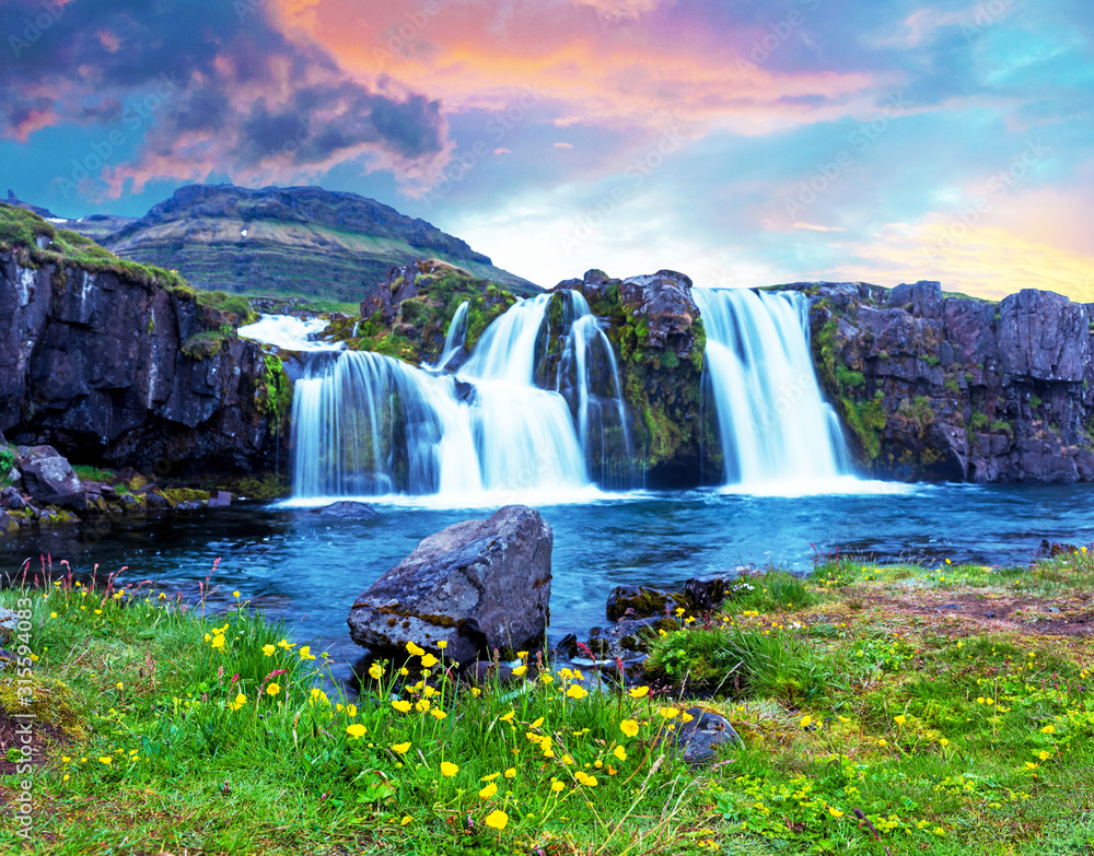 Beautiful terrific landscape with yellow flowers and big stone near waterfall Kirkjufell in Iceland at sunset. Exotic countries. Amazing places. Popular tourist atraction.