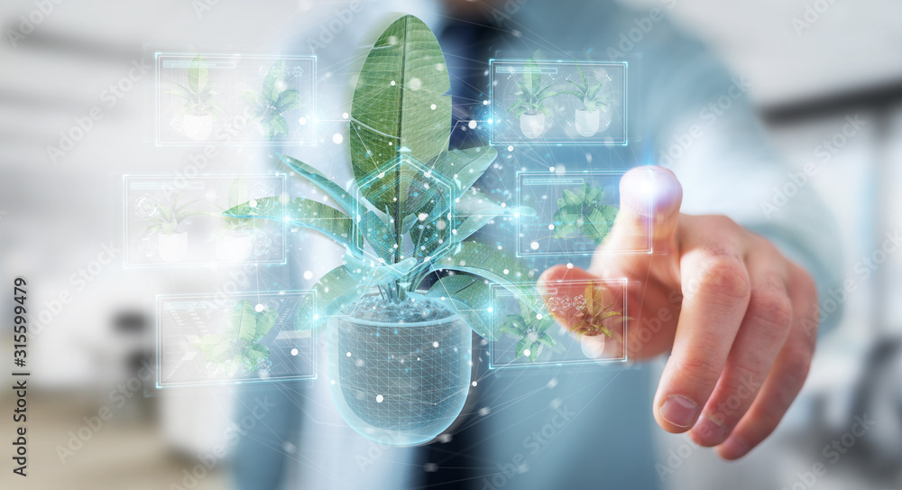 Fototapeta Man holding and touching holographic projection of a plant with digital analysis 3D rendering