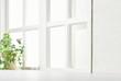 Leinwandbild Motiv 明るい部屋 観葉植物 窓