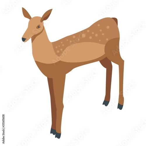 Photo Bambi deer icon