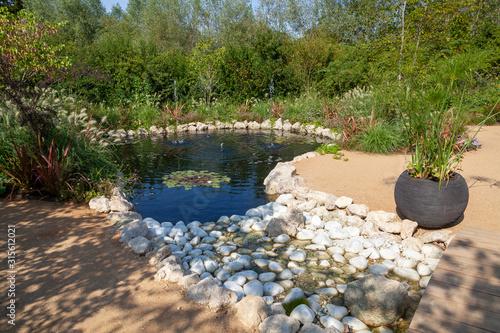 Aménagment paysager de jardin - bassin et rocaille Wallpaper Mural