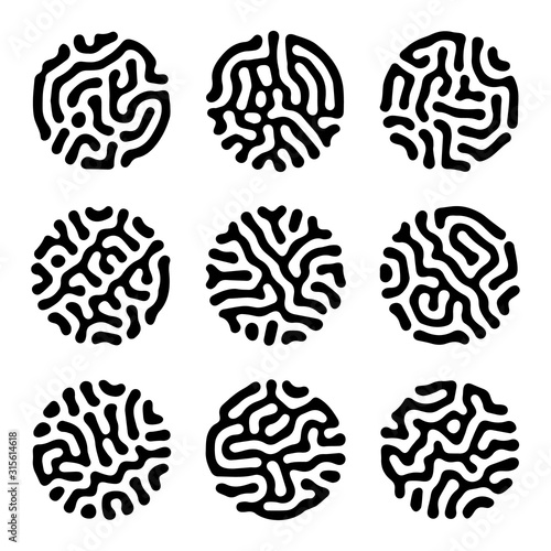 Fotografía  Set of reaction diffusion circle shapes