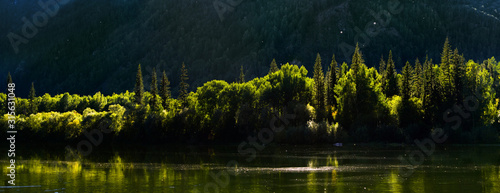Fototapeta Taiga forest on the steep mountain bank of the Small Yenisei river. Siberia, Russia. obraz