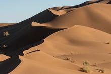 Sand Dunes In Lut Desert