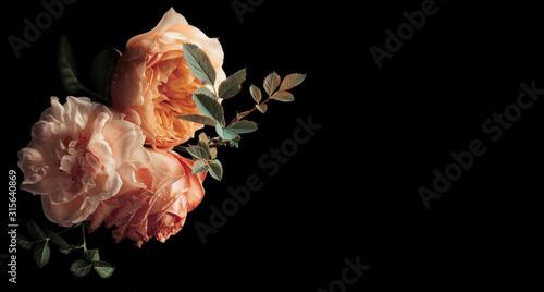 Obraz Beautiful bunch of colorful roses flowers - fototapety do salonu